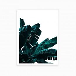 Duvar  İçin Resim Mavi ve Muz Yaprağı 35x25 cm