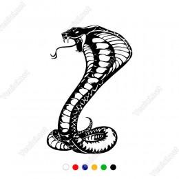 Dilini Çıkartmış Kobra Yılanı Sticker Yapıştırma