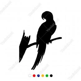 Dalın Üzerine Konan Sırtı Dönük Papağan Sticker