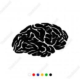Düşünen Detaylı Oluşmuş Kıvrımlı Beyin Sticker