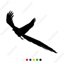 Kanatları Açık Geriye Dönen Anka Kuşu Duvar Stickerı
