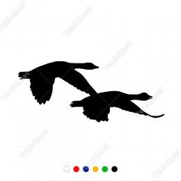 Kuzeyden Güneye Doğru Göç Eden Kuşlar Sticker